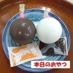 牧家の白いプリンとチョコレートプリン
